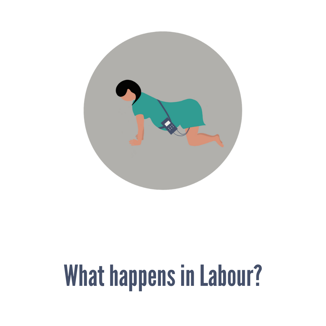 Whathappensinlabour