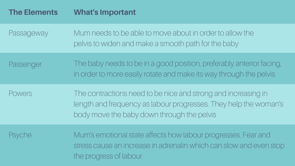Description of the elements of labour